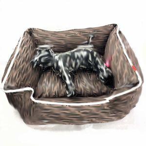 Luxus-F Schreiben Hund Katze Betten Dog Pup Kitty Schnauzer Teddy Bulldog Bichons Indoor Mode Hilft Schlaf Haustiere Betten Breathable Soft Cat Betten