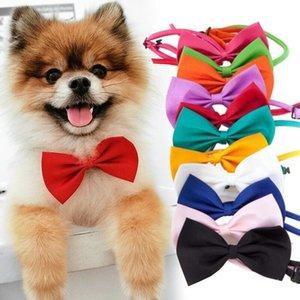 Pet Dog copricapo cravatta al collo del cane del gatto bow tie cravatta Pet grooming multicolore può scegliere DHE1449