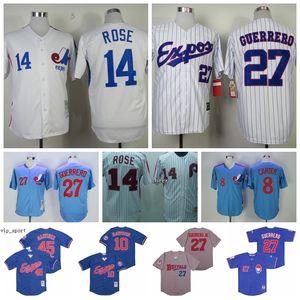 Baseball Riscas 10 Andre Dawson Jerseys 2000 14 Vintage Pete Rose 27 Vladimir Guerrero Buffalo Bisons 45 Pedro Martinez 8 Gary Carter