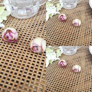 MsLZ6 Tutkal damlayan ACCE küpe kolye mobil durumda Diy cep telefonu kılıfı telefonu kabuk el yapımı DIY yarı mamul malzeme kurutulmuş gül çiçek