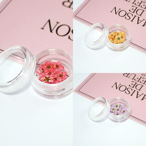 DIY glass cover special filler glue drop jewelry nail small dried Narcissus real flower plum flower embossed Diydiy