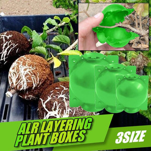 Plant Rooting Ball Grafting Rooting Growing Box Breeding Case for Garden Plant S M L high-pressure propagation box Sapling