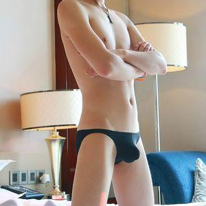 Male Underwear Sexy Men's Underpants Low Waist Sexy Transparent Breathable Mens Briefs Underwear Hot Man Thong For Men