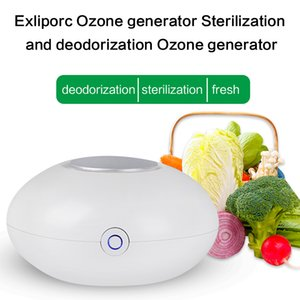 Mini Ozone Purifier Air purifier Refrigerator sterilizer Automobile sterilizer remove pesticides Degradation residue
