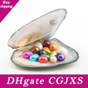 Овальный Oyster Pearl 6 -7mm Mix 15 Natural Pearl Цвет пресной воды Подарочные Diy Сыпучие украшения вакуумной упаковки Оптовая Pearls Oyster