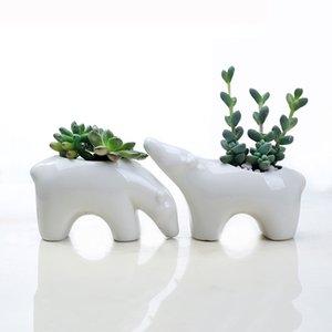 Vente en gros Nordic Céramique Succulent Flowerpot Bureau Creative Bureau Couples Top ours polaire vert végétation animale Plante en pot