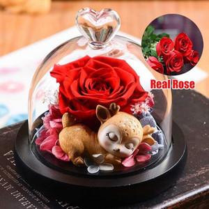 محفوظ الخالدة زهرة اليدوية ريال روز غطاء زجاجي الخالد الزهور مع صندوق عيد الحب هدايا عيد الميلاد لصديقة