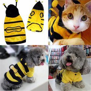 Pet Mascots Hoodie nette Kleidung für Katzen Fancy Welpen Kitten Kleid-Kostüm-Chihuahua Kleine Katze Hundemantel Bee Artausstattung