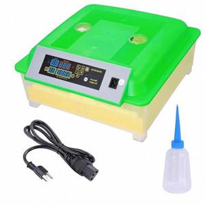 Neue 56-Ei-Brut Digitale Hatcher Drehen automatische Temperaturregelung KlCS #