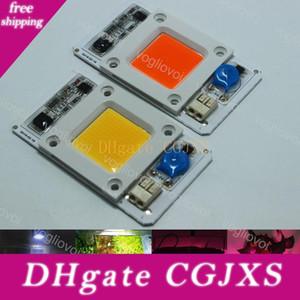 Lumière Perles Chip 50w Full Spectrum 380 -840nm blanc 6500k Grow Light intelligent Ic lecteur AC110 / 220v 380 -840nm Pour hydroponique plan intérieur EUB