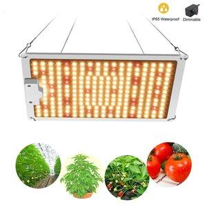 interruptores dobles al por mayor 600W / 900W / 1200W LED luces de espectro completo crecer durante hidropónicos Las plantas de interior VEG / BLOOM
