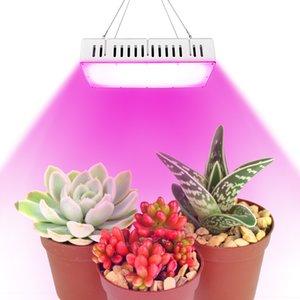 Luce della pianta 1500W spettro completo con ultra-silenzioso ventilatore doppio per il giardino, piante d'appartamento, ortaggi e fiori Plant Growth Proiettore