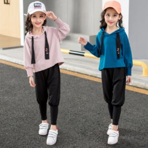 Sports girls clothing suits leisuregirls clothing hoodies + pants 2-piece suits children and adolescents girls' clothing