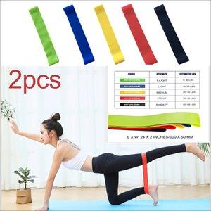 2pcs entraînement Pilated gymnastique élastique bandes de résistance Fitness Tirez Itstyle Fitness caoutchouc bandes élastiques entraînement