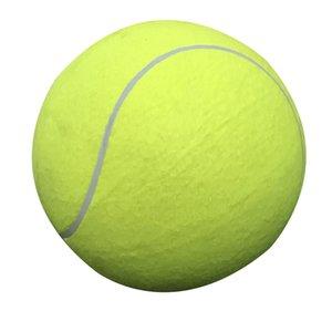 Materiali 24CM Toy Dog Grande palla da tennis gonfiabile cricket attività esterna per animali