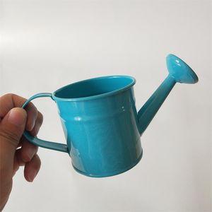 Garden small Metal flower kettle Mini Small water pot smart Decorative watering cans dollhouse accessory flower pot