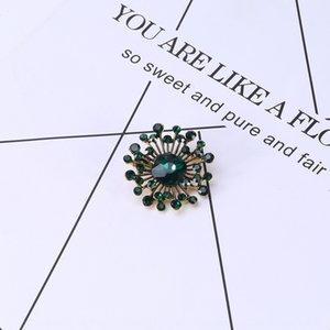 Avvolgere piccolo semplice cristallo e accessori di abbigliamento eleganti decorazioni e ornamenti accessori spilla spilla Gc7kU