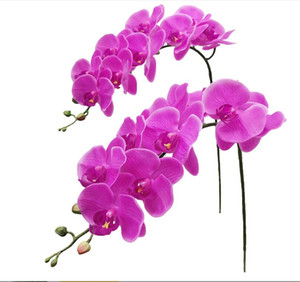 Fnize Fake Orchid Stems Artificial Bulk Phalaenopsis Centerpieces Arrangement Real Touch Artificial Flowers Plants 38 Inches