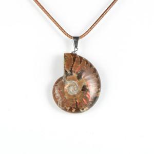 Mulheres Homens Pedra Natural Carved Fósseis Conch Seashell do caracol Colar Pingente amonitas Oceano Reliquiae animal Reiki Jóias