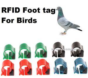 carta d'identità anello piedi piccione TK4100 ID anello del piede 125KHZ frequenza tag carta animale basso piccione RFID tag elettronico