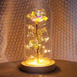 Christmas Decorations LED String Lights Everlasting Flower Glass Cover Rose Valentine's Day Gift Creative Decoration Mother's Day Gift Home
