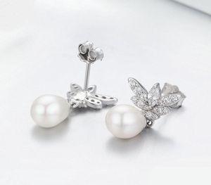 Luminous Butterfly Clear CZ Stud Earrings for Women 925 Sterling Silver Earrings Luxury Silver Jewelry Gift66