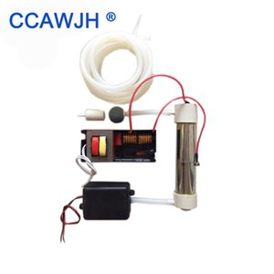 220V 110V SilicaTube Ozone Generator 2g h For Air and Water Purification 1 set starts Accessary Optional + Free Shipping