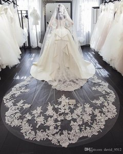 Long Wedding Veil with Lace Applique Edge White Ivory 1T Delicate Lace Bridal Wedding Veils Chapel Cathedral Handmade Custom Free Comb Tulle