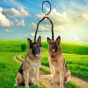 Double Lead guinzaglio dell'animale domestico Walking 2 Cani trazione della corda Pet guinzaglio Splitter elastico bungee accoppiatore Dog Supplies vMWA #