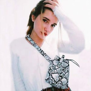 Waist bags For Women 2019 fanny Pack bucket belt bag Serpentine alligator leather women Shoulder Bags Bolsa feminina