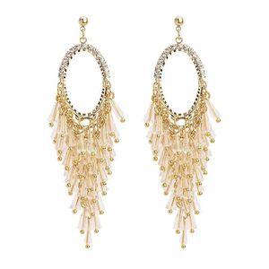 Cool breeze super fairy crystal earrings Korean temperament long pendant personality exaggerated super flash diamond tassel earrings silver
