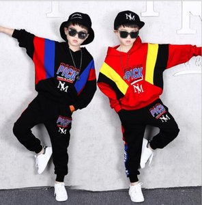 Boys and children's long sleeve suit autumn children's sweater two piece set medium and large children's loose casual fashionable clothes si