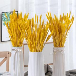 50 PCS trigo natural Tallos del trigo secas ramo de las flores de la planta de la decoración DIY de Scrapbooking Navidad de la boda del ramo de la decoración del hogar