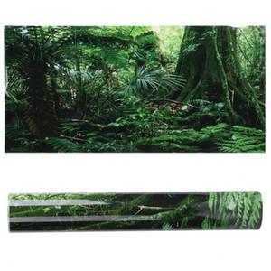 Décorations Aquarium Ornements PVC Reptile Box Rainforest Fond Fond D'affiche Piscine Tank Picture Picture Peinture Décoration Auto-adhésif
