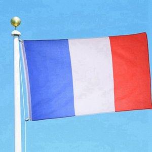 30шт флаг Франции флаг баннер 3х5 FTS 90 * 150см национальный полиэфирные французский флаг
