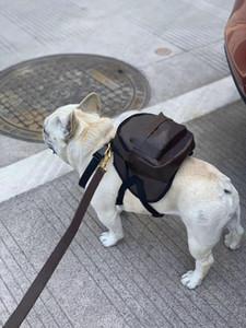 مصمم حقائب جلدية الكلب المقاود الصغيرة والمتوسطة الحجم الكلاب حقائب خارجية صندوق اللباس على المشي الكلب المنتجات يجب