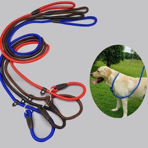 1.4M كلب جرو نايلون حبل التدريب المقود زلة الرصاص الياقة الشريط الحيوانات الأليفة الحيوانات اللوازم حبل اكسسوارات KKA8077