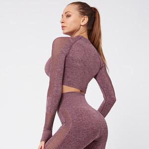 Frauen-nahtlose Yoga Sets hohe Taillen-Gym-Ineinander greifen Gamaschen Shirts Anzug Langarm-Fitness Workout Sport Laufen Thin Yoga-Sets