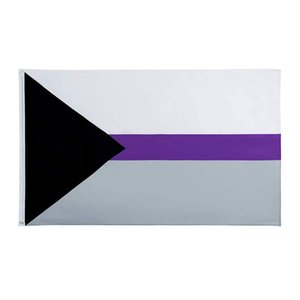 Demisexual Pride Flag 3x5ft Digital Printing Polyester Outdoor Indoor Use Club printing Banner and Flags Wholesale