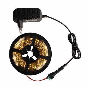 Hot sell 5M 300Leds waterproof RGB Led Strip Light 3528 DC12V 60Leds M Flexible Lighting String Ribbon Tape Lamp Home Decoration Lamp