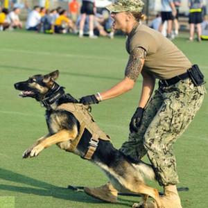 Hundegeschirr Solid Color Breathable Ineinander greifen weiche Polsterung Hundegeschirr Einstellbare Trainingsweste Bekleidung Außen Pet Accessory