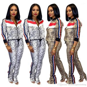 Snake Printed Autumn Casual Slim Long Sleeved Stand Collar Sports Suits Fashion Women Tracksuits Womens Designer Tracksuits 2 Piece Pants