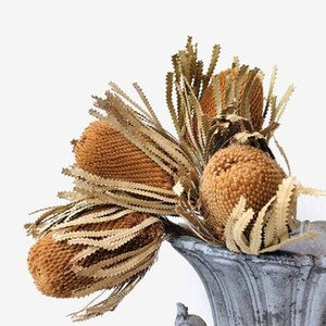 1pc Nordic Style Banksia Natural Dried Flowers Craft DIY Bouquet Indoor Home Flower Arrangement Vase Decor Wedding Photo Props