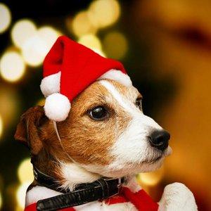Cute Pets Hat Plush Christmas Hats Xmas Tree Caps with Ball Decor New Year Decoration Puppy Santa Navidad Soft Dog Mini Hats