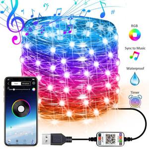 cerimonia nuziale del partito luci leggiadramente della stringa Music Sync colori striscia di RGB LED Bluetooth APP Controllo Copper Wire Archi di Natale USB decorazione esterna