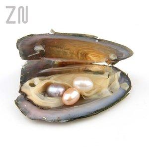 Pearls Farklı Miktarlar Büyük İnci Doğal İnci Hediyeler midye ile Bireysel Sarılmış İstiridye