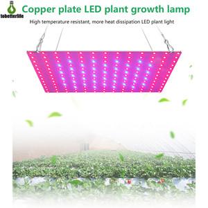 LED 식물은 빛 85-265V Phytolamp 2835 81led 169led IP20 비 방수 성장 조명 전체 스펙트럼 수경 식물 램프를 성장