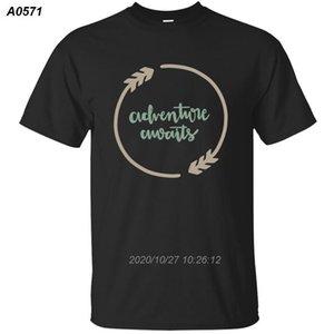 erkekler için Kişilik Comical muhasebeci muhasebe hediye tişört 2020 giyim Resimler t shirt pamuk Ç Boyun HipHop 9152810 mens
