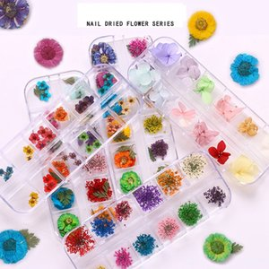 Dried Nail Art Kit 36pcs Dry Natural Flowers Nail Art Supplies 3D Applique Nail Decoration Sticker for Tips Manicure Decor