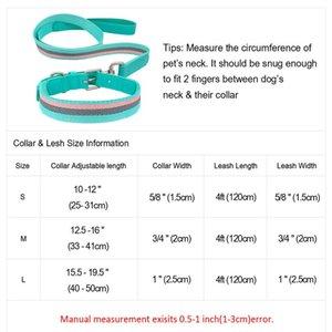 Nylon-Hundekragen und Leine einstellbar einstellbar reflektierender Streifenhund-Halsbänder und Pet Walking-Lead-Leine für kleine mittelgroße Hunde Wmtcni